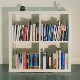 Library Of Consciousness Bookcase LR