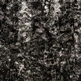 Min(e)d Silver Detail 3 LR