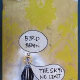 bird-brain